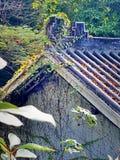 O telhado da selva fotografia de stock