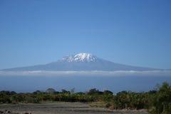 O telhado de África Foto de Stock Royalty Free
