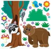 O tema dos animais da floresta ajustou 3 Imagens de Stock Royalty Free