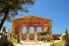 O templo de Segesta (Sicília) Fotos de Stock Royalty Free