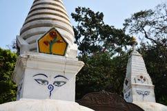 O templo de Swayambhunath ou o templo do macaco com sabedoria eyes Imagem de Stock