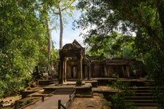 O templo de Ta Prohm em Cambodia Foto de Stock