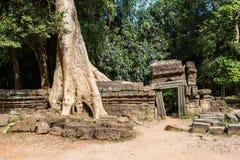 O templo de Ta Prohm em Cambodia Fotografia de Stock Royalty Free