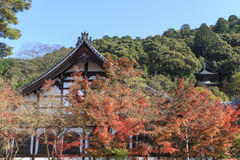 O templo japonês do budismo nomeou o templo de Eikando lugar famoso para Autumn Colors em Kyoto, Japão Fotos de Stock