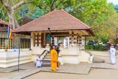 O templo pequeno ao lado da árvore de Bodhi Fotografia de Stock Royalty Free