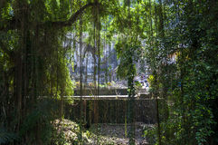 O templo perdido na selva foto de stock