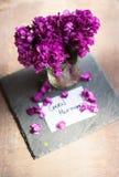 O tempo de mola… aumentou as folhas, fundo natural Imagem de Stock Royalty Free