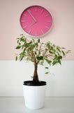 O tempo vai perto Foto de Stock