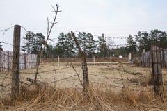 O território atrás da cerca do arame farpado imagem de stock royalty free