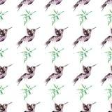 O teste padrão da aquarela da ilustração objeta as folhas do verde do colibri do pássaro ilustração royalty free