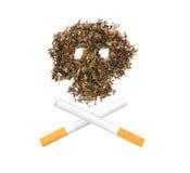 O teste padrão do crânio do cigarro Foto de Stock