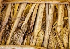 O teste padrão do fundo de cobre com sapê com textura agradável fotografia de stock