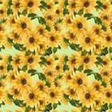 O teste padrão do girassol amarelo de florescência das flores pintado na aquarela Fotos de Stock