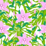 O teste padrão floral com o lírio cor-de-rosa grande tropical floresce Fotos de Stock Royalty Free