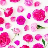 O teste padrão floral da peônia floresce, rosas e folhas no fundo branco Configuração lisa, vista superior Composição floral do e Foto de Stock Royalty Free
