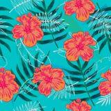 O teste padrão sem emenda colorido do verão com plantas tropicais e hibiscus floresce ilustração royalty free