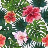 O teste padrão sem emenda colorido do verão com plantas tropicais e hibiscus floresce ilustração do vetor