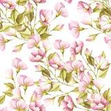 O teste padrão sem emenda com as flores de selvagem aumentou Ilustração da aguarela Fotos de Stock Royalty Free