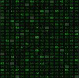 O teste padrão sem emenda com encanta o código do programa no verde, como monitores velhos ou na matriz Imagem de Stock Royalty Free