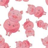O teste padrão sem emenda com porcos engraçados pintou a aquarela em um b branco Fotografia de Stock Royalty Free