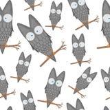O teste padrão sem emenda das corujas em um ramo para artigos de papelaria das crianças projeta e roupa Pássaro dos desenhos anim Imagem de Stock Royalty Free