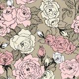 O teste padrão sem emenda de rosas selvagens floresce ramo isolado no marrom Ramos tirados mão com branco, nata da flor, cor-de-r imagem de stock