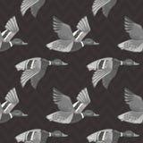O teste padrão sem emenda do vetor cinzento escuro com voo ducks ilustração stock