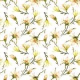 O teste padrão sem emenda feito da magnólia amarela floresce em um ramo no fundo branco Pintura da aguarela Pintado à mão Imagem de Stock