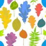 O teste padrão sem emenda floral com amarelo do grunge do outono, vermelho, laranja, verde, árvore azul sae no fundo branco Bordo Imagem de Stock