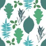 O teste padrão sem emenda floral com o grunge do outono azul, árvore verde sae no fundo branco Foto de Stock Royalty Free