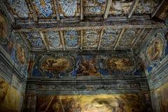 O teto de um salão, Castello Vallaise imagens de stock royalty free
