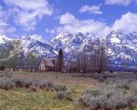 O Tetons grande na primavera Imagens de Stock
