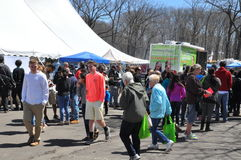 O 37th festival anual do narciso amarelo em Meriden, Connecticut imagem de stock royalty free