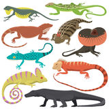 O tipo diferente do réptil do lagarto isolou a ilustração do vetor ilustração do vetor