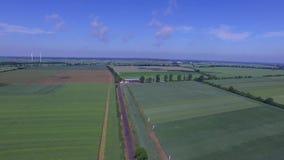 O tiro aéreo bonito do zangão de um campo verde com exploração agrícola, metragem aérea, DJI INSPIRA video estoque