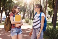 O tiro das estudantes universitário encontra-se acidentalmente no parque, leva sacos e os livros, têm a conversa agradável, bate- imagens de stock