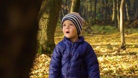 O tiro do movimento lento de um menino chocado na floresta do outono sorri então filme