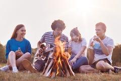 O tiro melhor de amigos fêmeas e masculinos aprecia o dia de verão no piquenique, joga a guitarra acústica, senta-se perto da fog Fotos de Stock Royalty Free