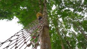 O tiro Slowmotion de um rapaz pequeno em um chicote de fios de segurança escala em uma rota nas copas de árvore em um parque da a video estoque