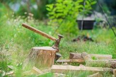 O tiro temperamental do machado cortou em um coto no fundo verde do campo e da floresta imagens de stock