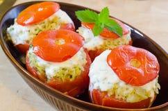 O tomate do forno enchido com tritura a carne Imagem de Stock