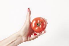 O tomate do legume fresco na mão da mulher, dedos com vermelho prega o tratamento de mãos, isolado no fundo branco, conceito saud Fotos de Stock Royalty Free
