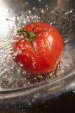 O tomate espirrou com água Fotografia de Stock Royalty Free