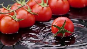 O tomate maduro cai na tabela video estoque