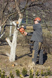 O trabalhador com uma serra manual imagens de stock
