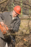 O trabalhador com uma serra manual Fotografia de Stock Royalty Free