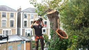 O trabalhador corta ramos de árvore video estoque