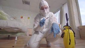 O trabalhador do controlo de pragas examina um besouro inoperante video estoque