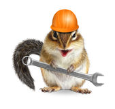 O trabalhador engraçado do esquilo do trabalhador manual com capacete e chave isolou o Imagens de Stock Royalty Free