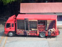 O trabalhador levanta o painel lateral de Coca-Cola marcado caminhão de entrega imagem de stock